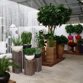 Maxifleur Artificial Plants