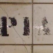 Pia R