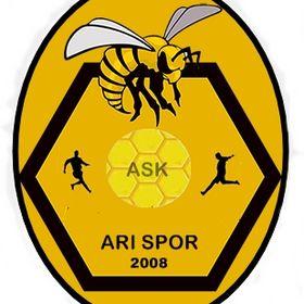 Arı Spor