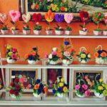 Flowershop van Schijndel