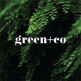 green+co
