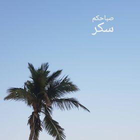 fatma hafsa