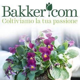 Bakker - Il vivaio online