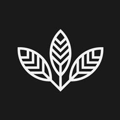 Designbysoap | Data Design & Storytelling