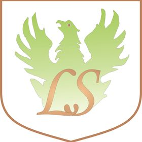 Limousine Service Ltd.
