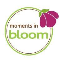 Moments in Bloom Weddings