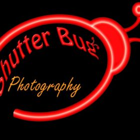 Shutter Bug Painting & Photo
