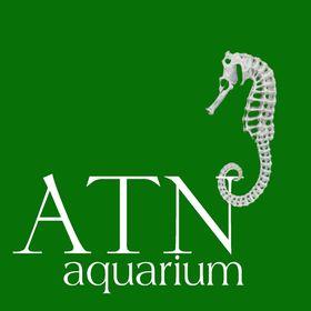 ATN & Akwarium ©