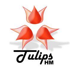 TulipsHM