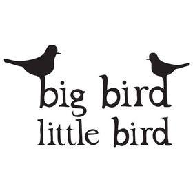 Big Bird Little Bird