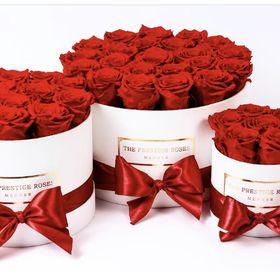 The Prestige Roses España