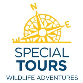 Special Tours Iceland