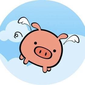 Piggybear Travels