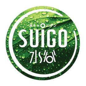 Suigo South Africa