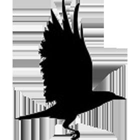 Seventeen Ravens
