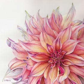 Charlotte Ambler Art   Original Art & Prints
