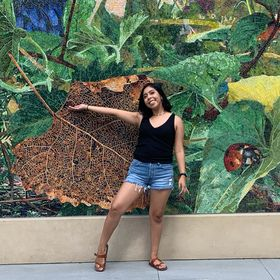 Michelle Pacheco