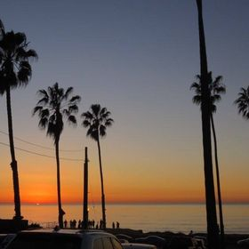 Maya's Diary in San Diego | Ultimate tips for living, studying and working in US