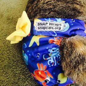 SNAP Wraps !
