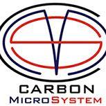 Carbon Microsystem