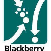 Blackberry&Cross