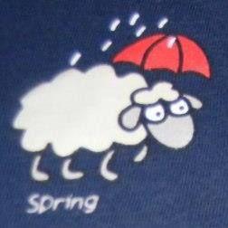 Kasia W Krainie Deszczowców