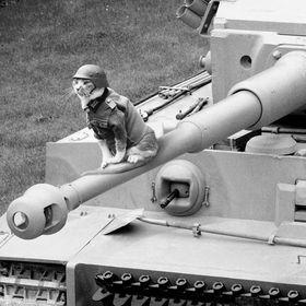 Panzerofil
