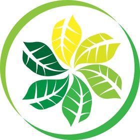 Sheehan Natural Health Improvement Center