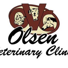 Dr. Lelan Olsen