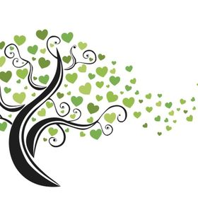 Lifetree Healing & Teaching Centre