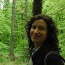 Sara D'Ulizia