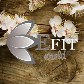 EfitWorld