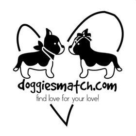 Doggies Match