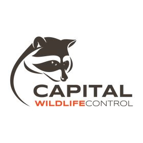 Capital Wildlife Control Montreal