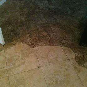 Carpet Sparkle