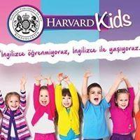Harvard Kids