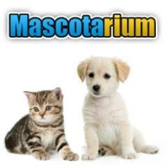 Mascotarium Tienda de animales y mascotas