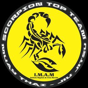 Scorpion Top Team