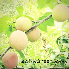 HealthyGreenSavvy | Practical Solutions for Healthy, Green Living