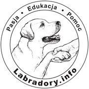 Labradory Info
