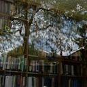 Tavistock & Portman Library