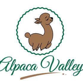 Alpaca Valley