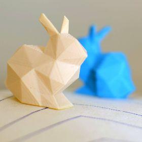 Rabbit Form