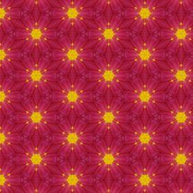 Pixie Pattern