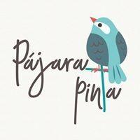 Pájara Pinta