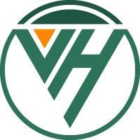 Công ty TNHH Việt Hosting