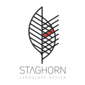 STAGHORN NYC