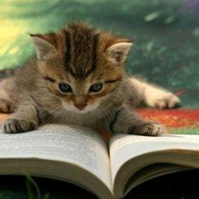 Literature for Kids