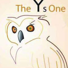 The Ys One Writing Service