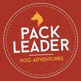 Pack Leader Dog Adventures
